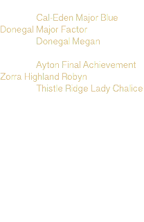 Cal-Eden Major Blue Donegal Major Factor Donegal Megan Ayton Final Achievement Zorra Highland Robyn Thistle Ridge Lady Chalice